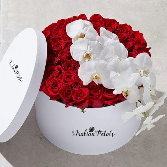 Red Roses  With White Phalaenopsis Round Box - Arabian Petals