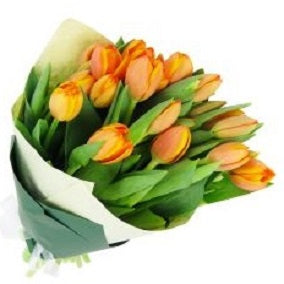 Orange Tulip Bunch - FWR - Arabian Petals