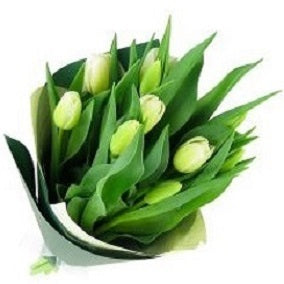 White Tulip bunch - FWR - Arabian Petals