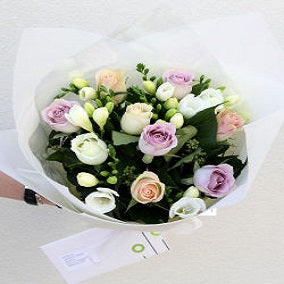 Roses and Freesias - FWR