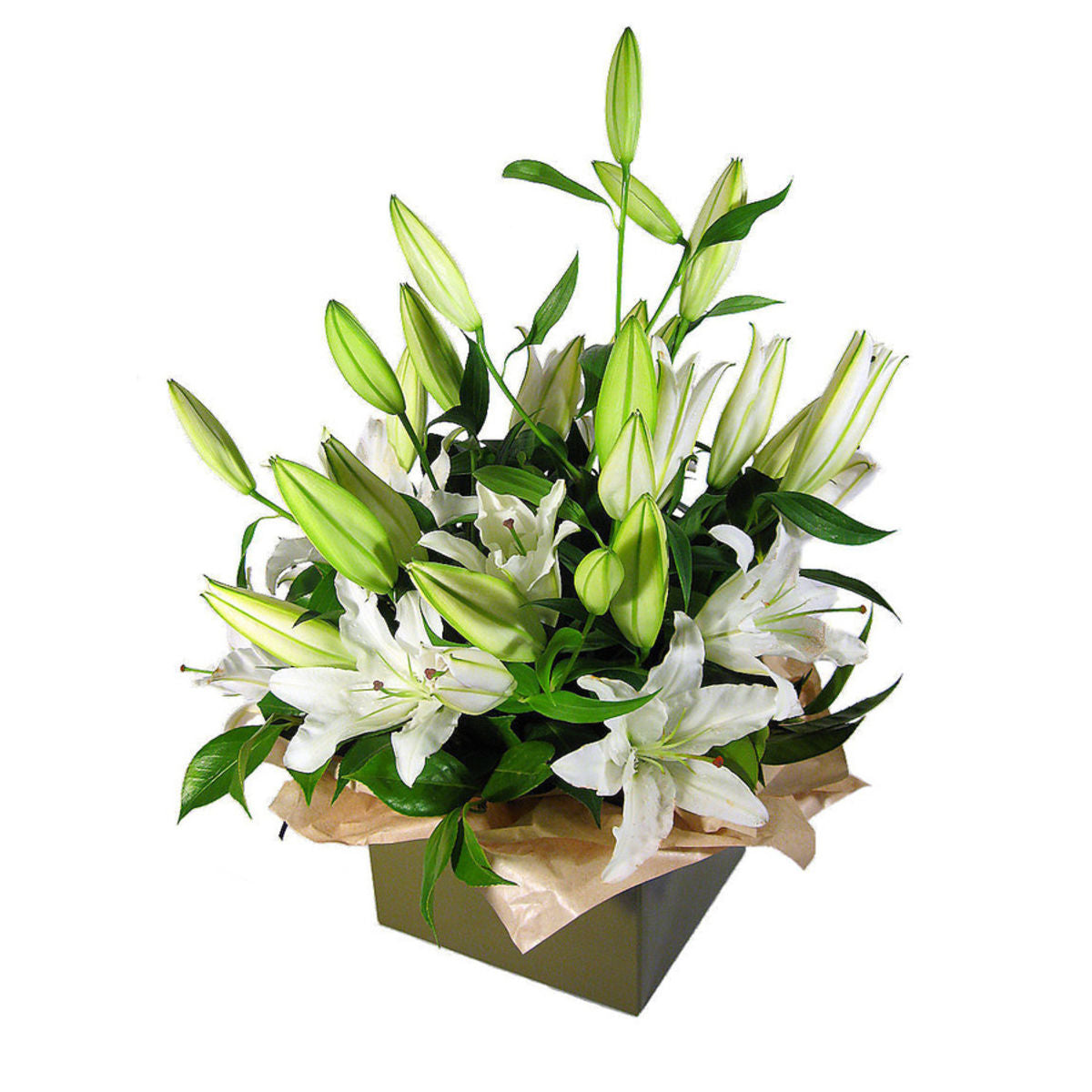 White Lillies Box