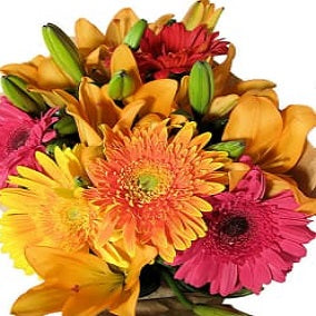 Fun Bright Bouquet - FWR