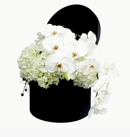 Phalaenopsis Orchids and Hydrangea Floral Box - Arabian Petals