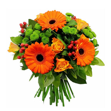 Orange Daisies - FWR - Arabian Petals