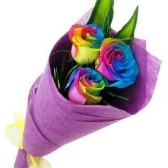Rainbow Roses Bouquet - FWR