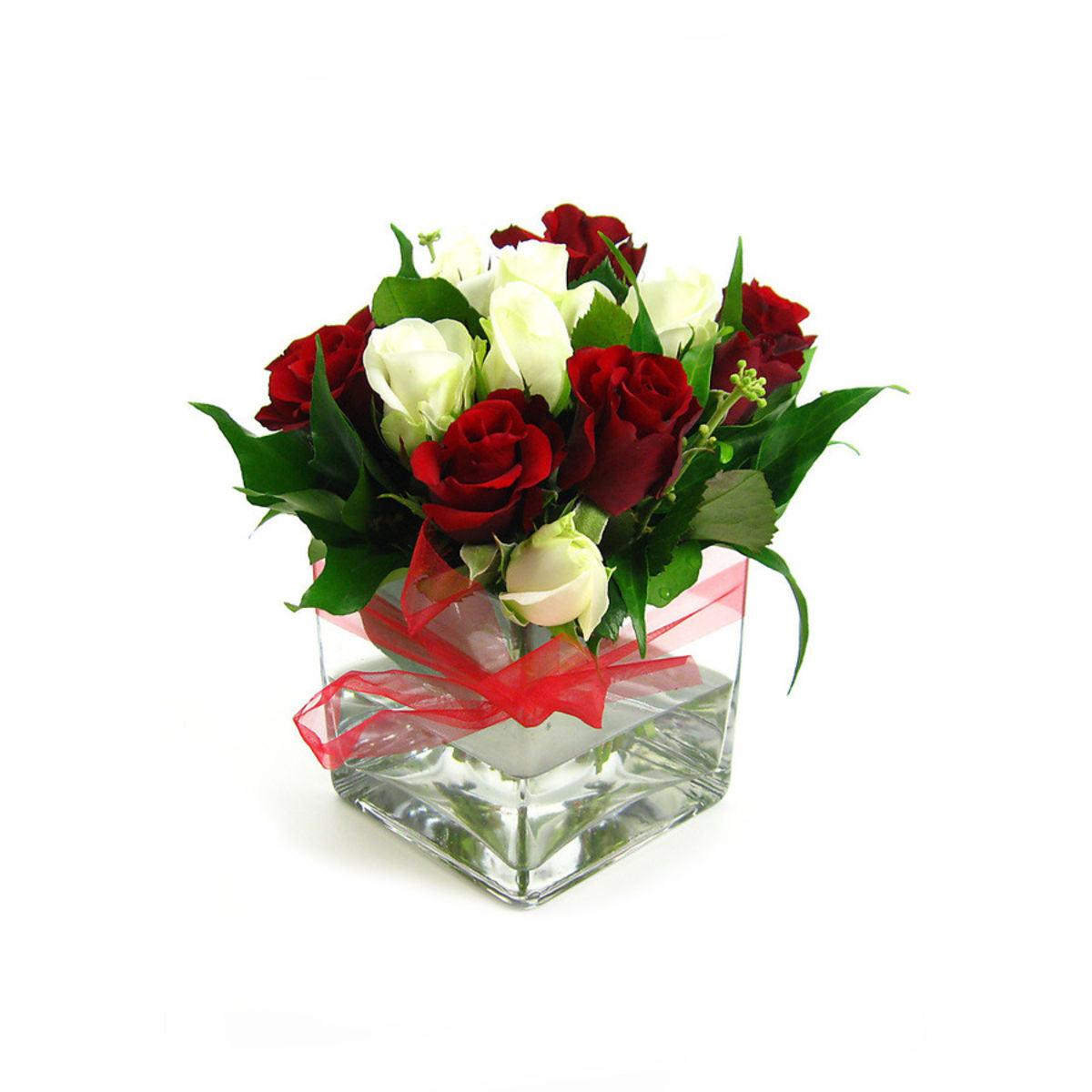 Red & White Rose Vase - Godiva Coeur Iconique Grand - Arabian Petals
