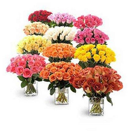 Twelve Bouquets of Roses - FWR - Arabian Petals