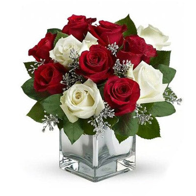 Romantic Red White Roses - VD - Arabian Petals