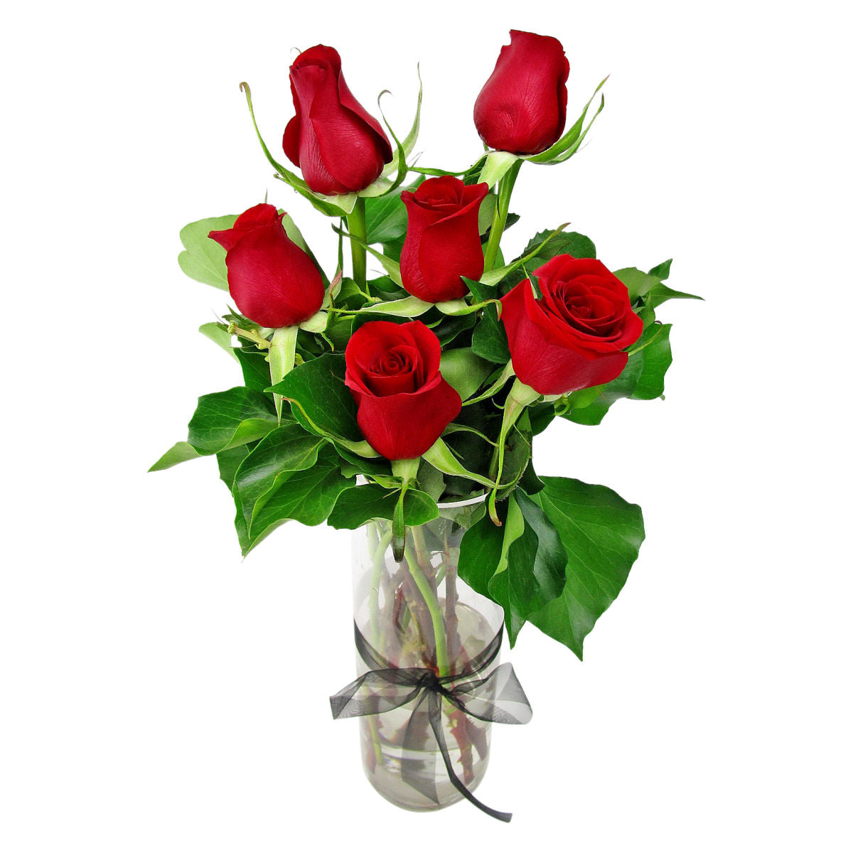 6 Red Rose Vase - Arabian Petals