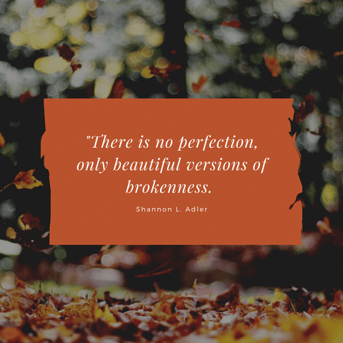There is no perfection quote