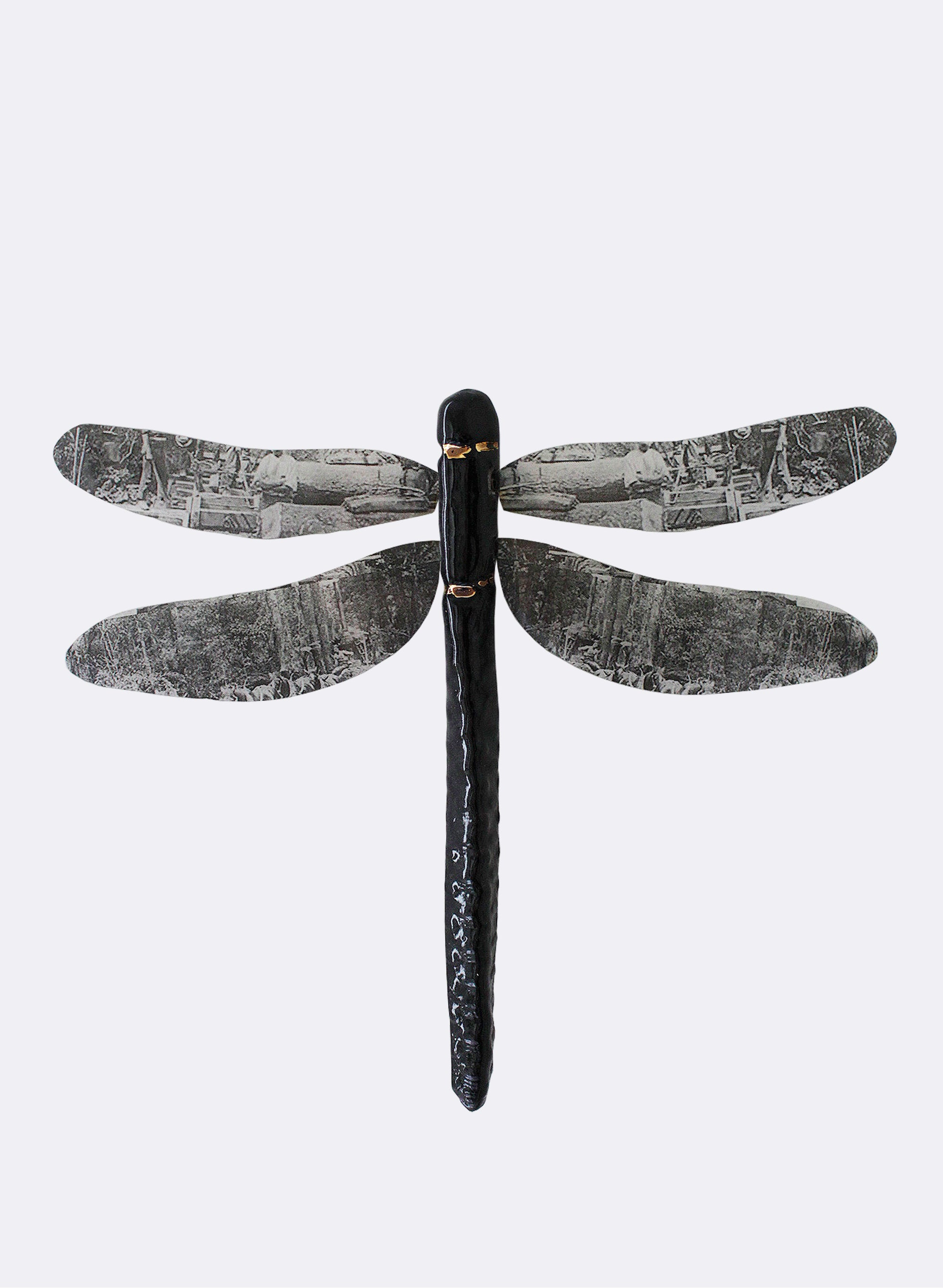 Ceramic Dragon Fly - Black & Gold