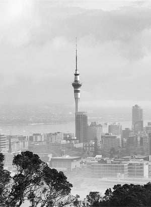 Super City (Mt Eden, Auckland)