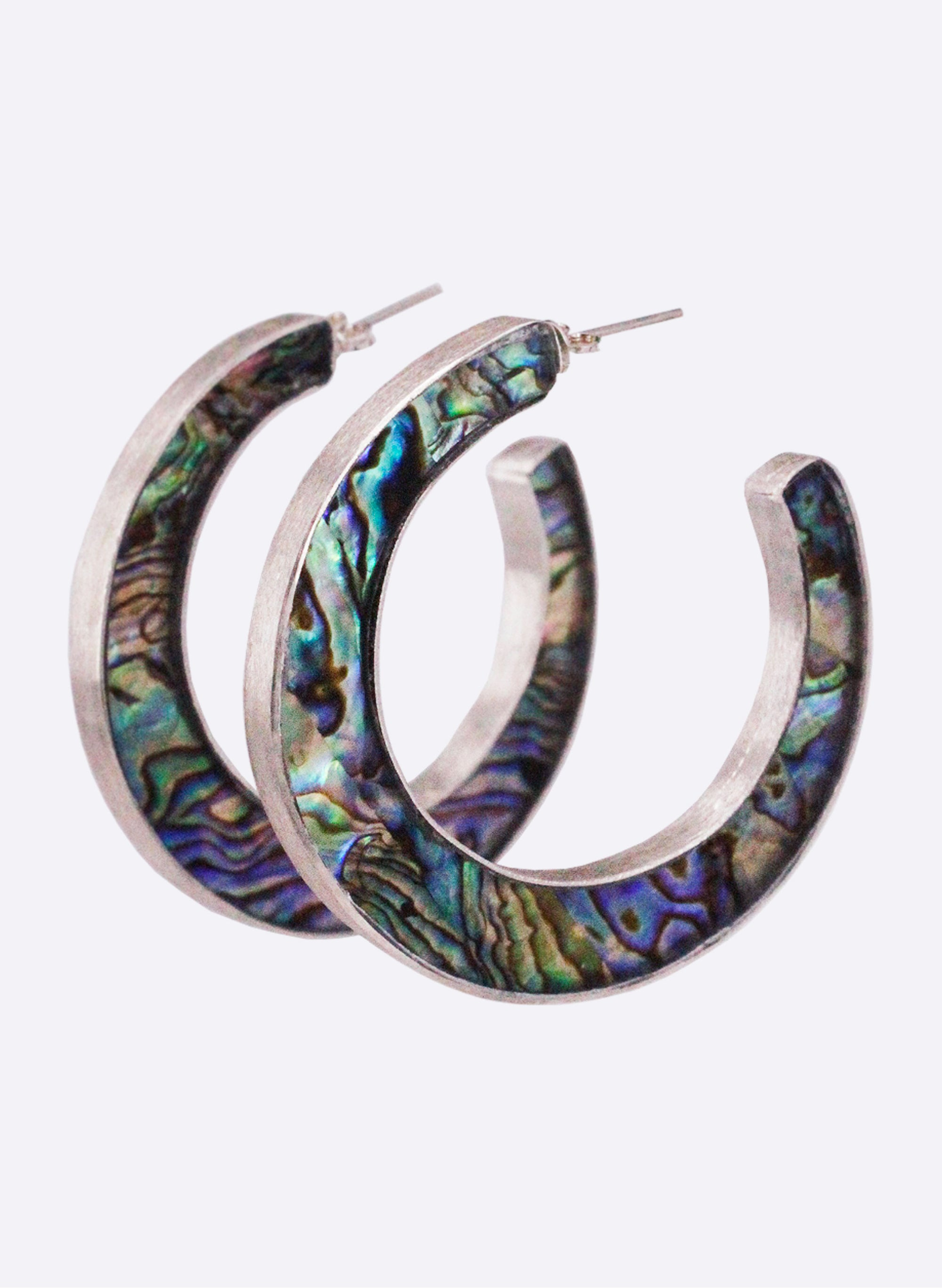 Paua Hook Earrings