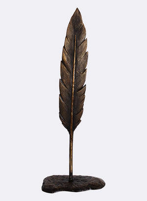 Blackbird Feather