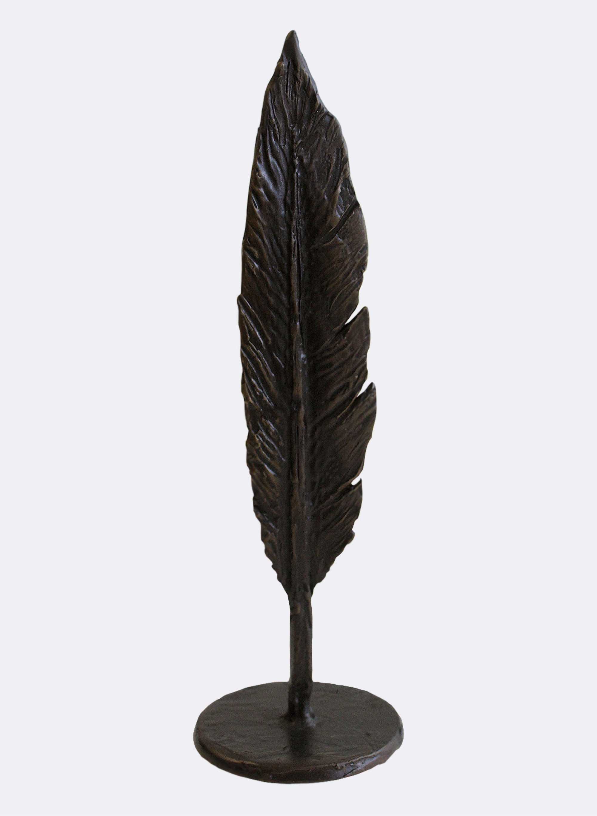 Dark Bronze Blackbird Feather