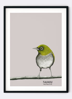 Tauhou | The Wax Eye