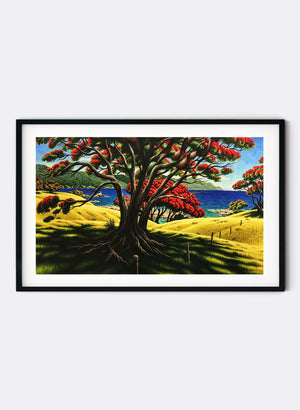 Old Man Pohutukawa (Lottin Point) - Giclée Print