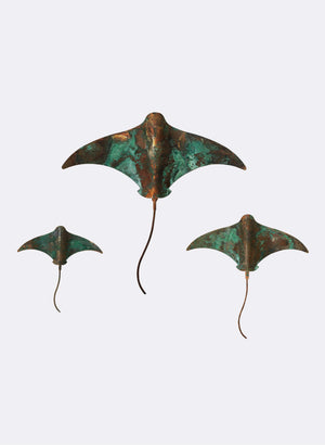 Stingray - Set of 3