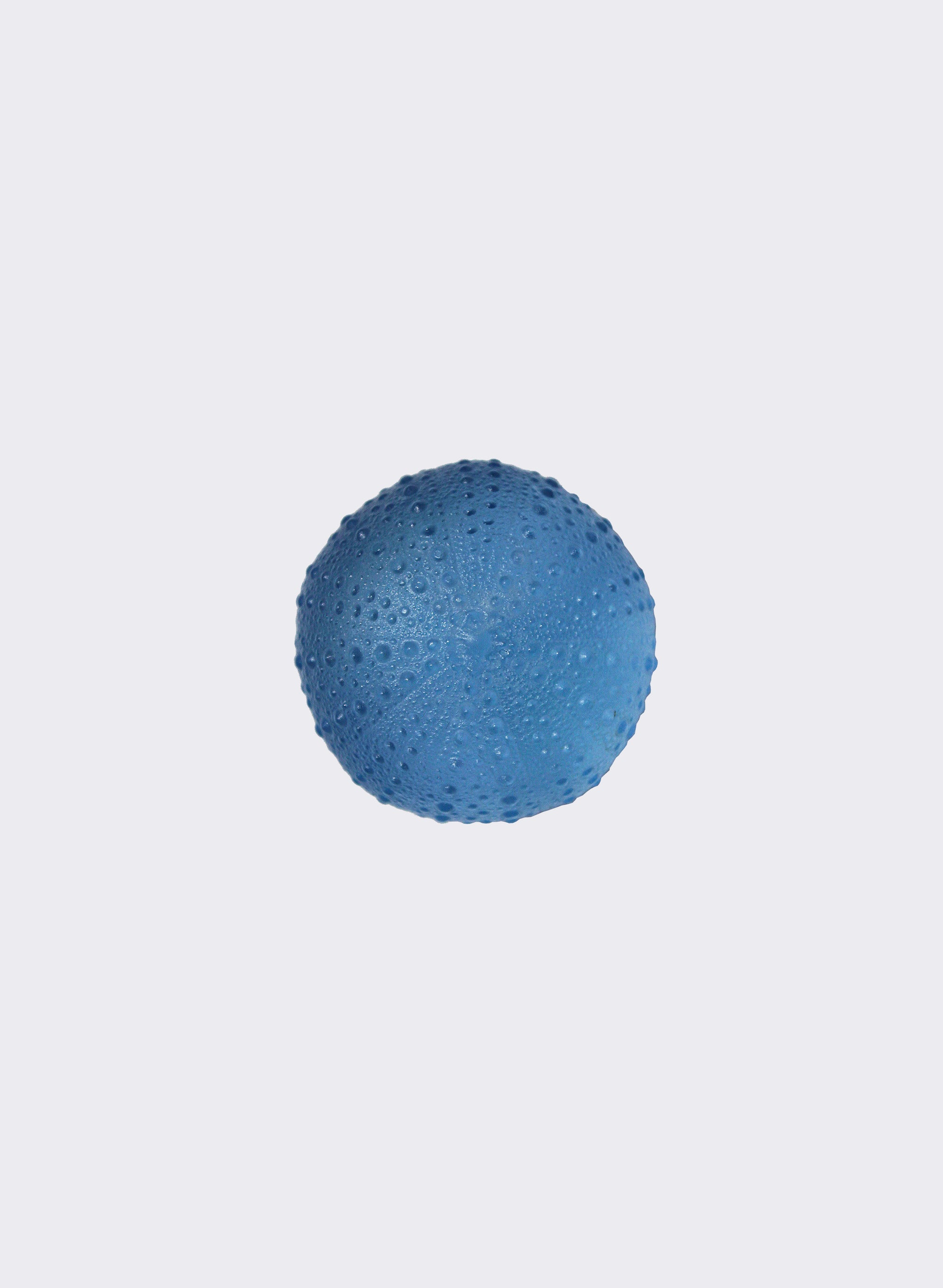Large Sea Urchin - Pale Cobalt