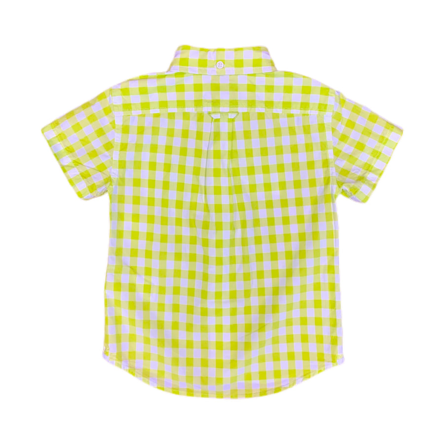 NEW Crewcuts shirt, 3