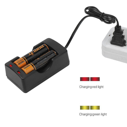Boruit Smart Charger Kit and Batteries Plugged In