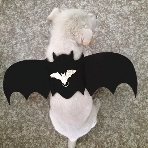 Image of 2019 New Halloween Pet Dog Costumes Bat Wings Vampire Black Cute Fancy Dress Up Halloween Pet Dog Cat Costume