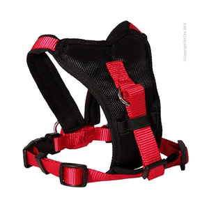 Harness Comfy 54 To 66cm Padded 20mm Black Red