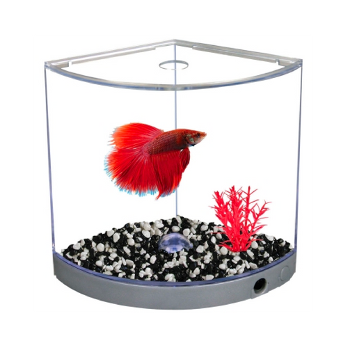 BettaArc Betta Kit With LED Base Light 1.2L Silver