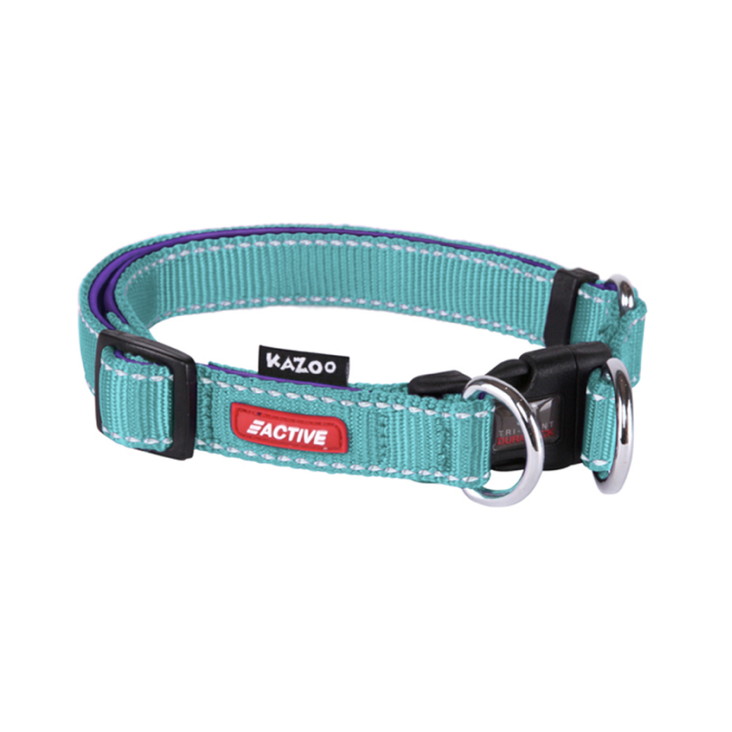 Active - DD Adjustable Nylon Collar Ex Large Aqua / Purple