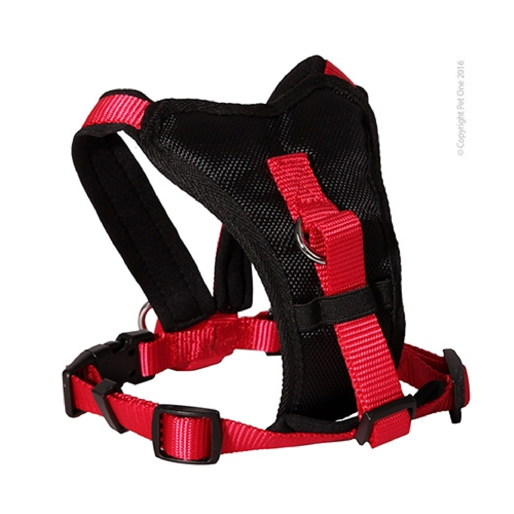 Harness Comfy 76 To 92cm Padded 25mm Black Red