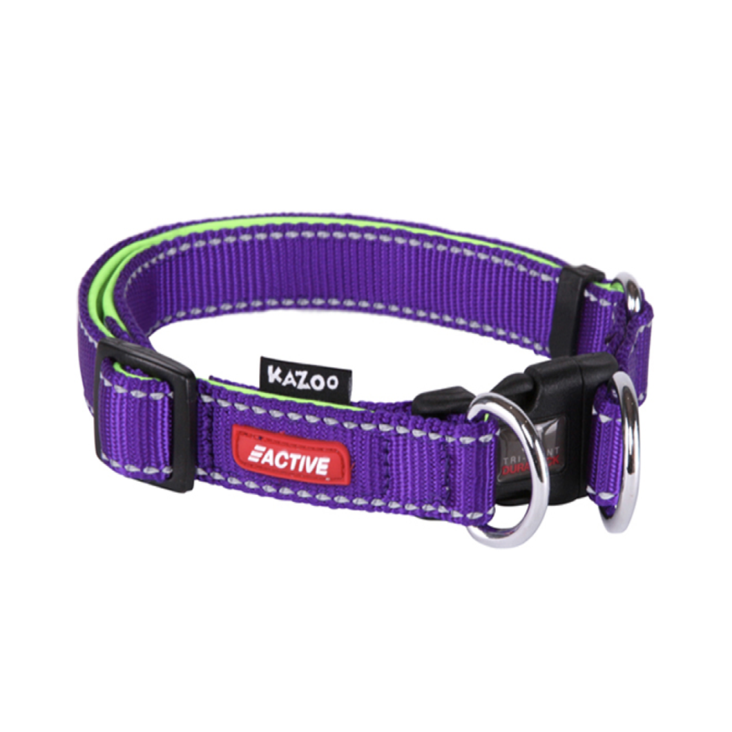 Active - DD Adjustable Nylon Collar Ex Large Purple / Lime