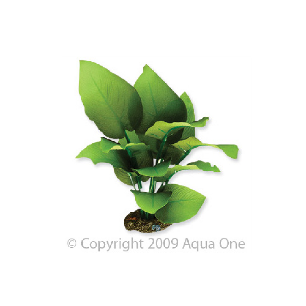 Silk Plant Sword Radicans Medium