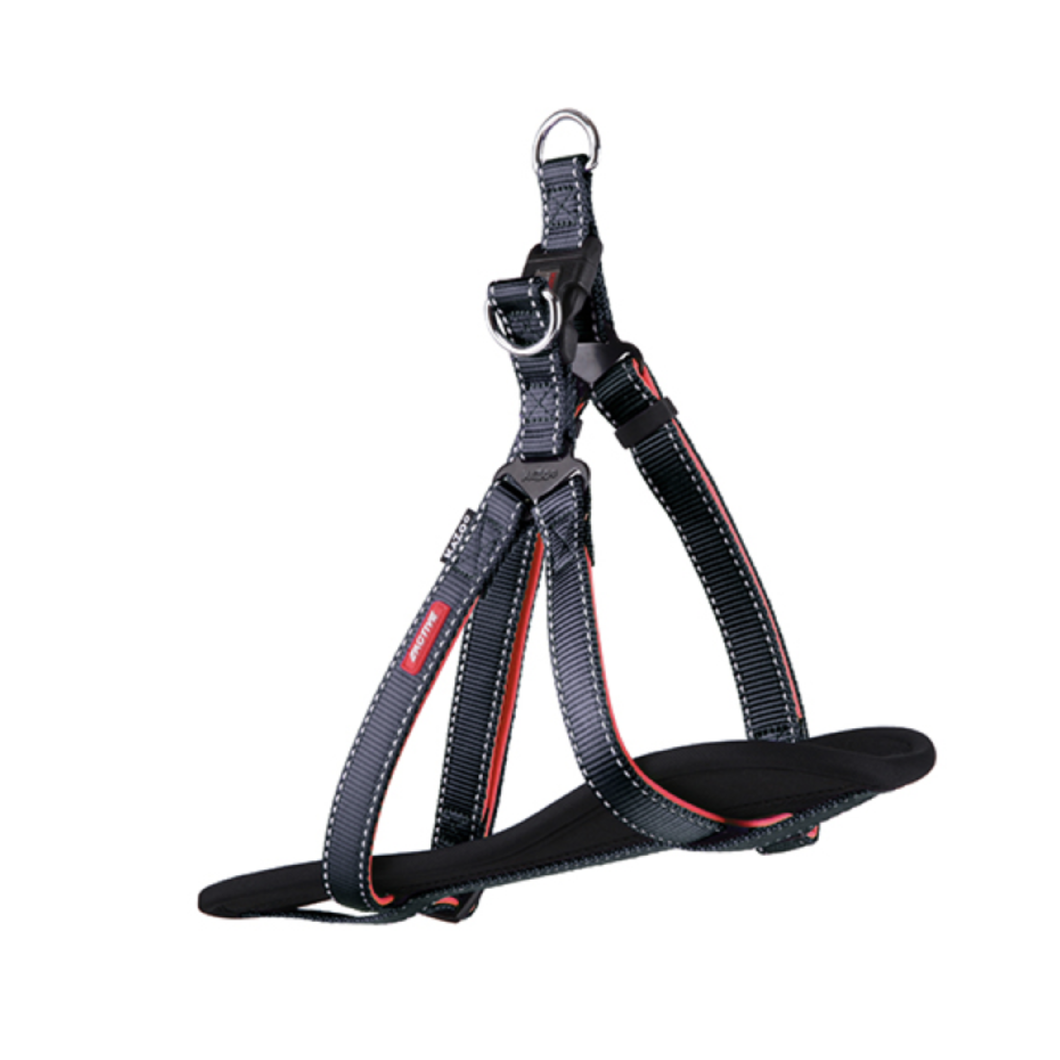 Active - DD Nylon Walking Harness Large Slate / Orange
