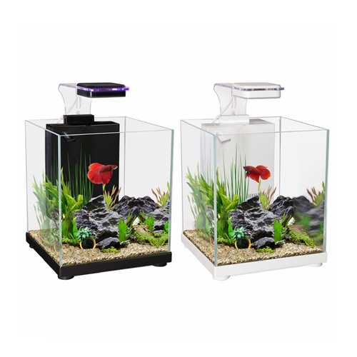 Betta Sanctuary Glass Aquarium 10L 22.4W X 22.4D X 26.3cm H (black)