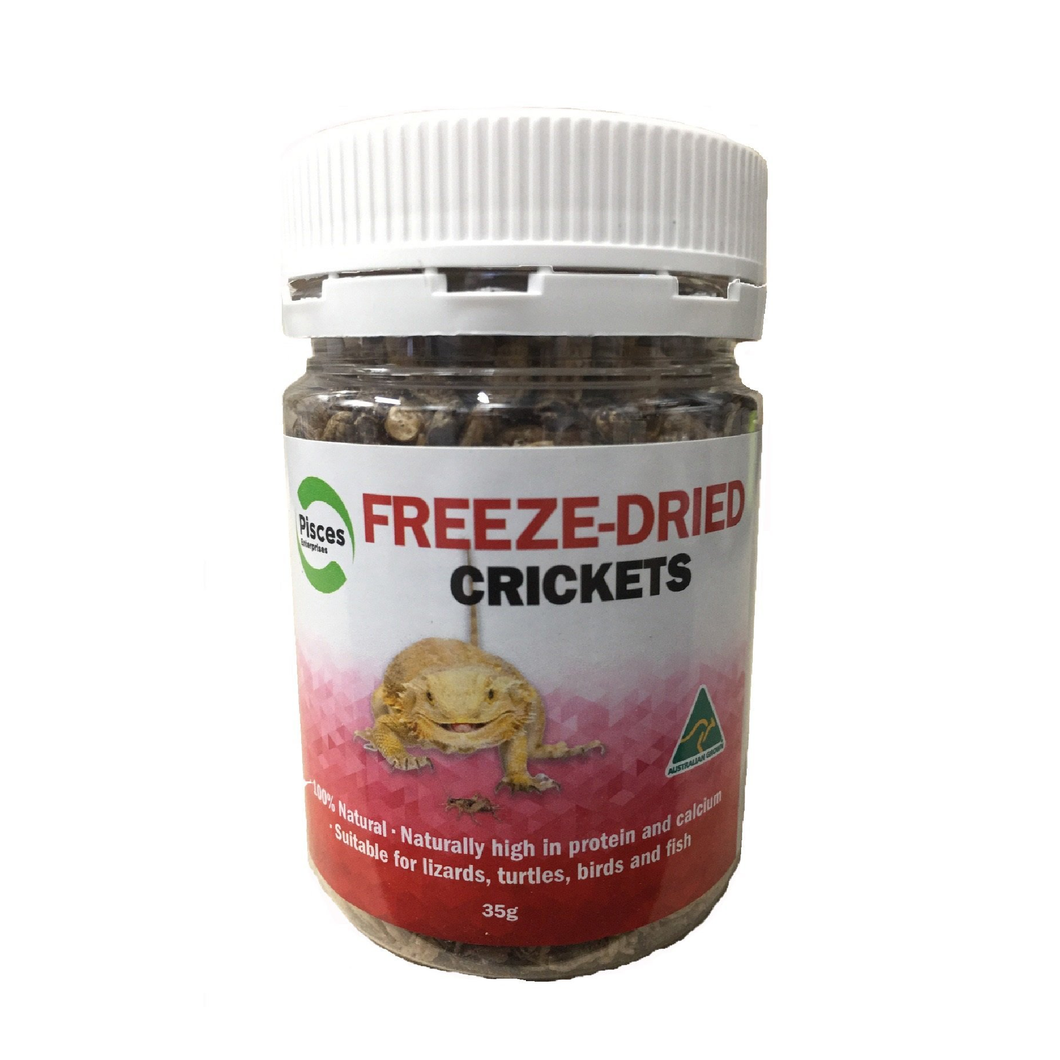 Freeze-Dried Crickets