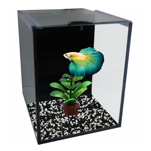 Betta Villa Single 16x16x16cm