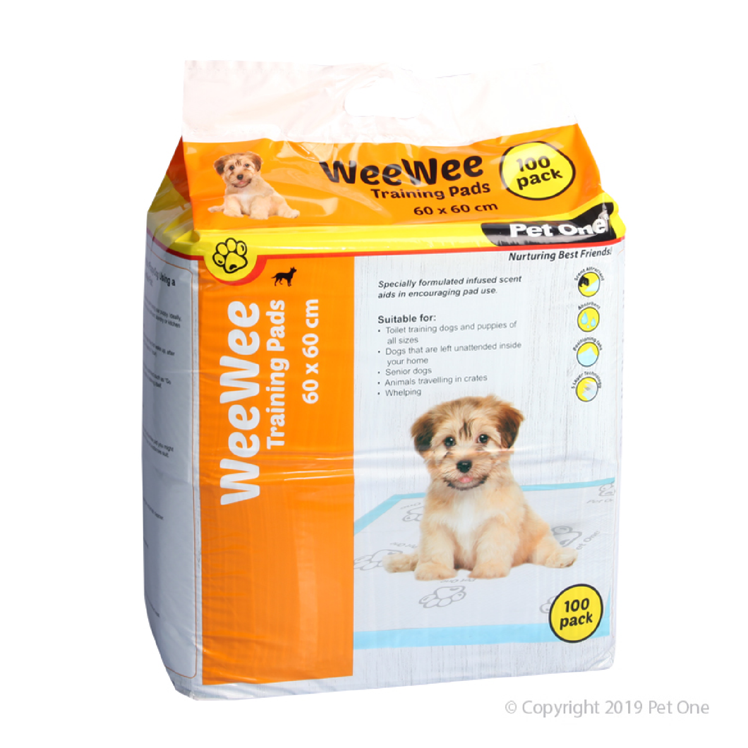 WeeWee Training Pad 60x60cm 100 Pack