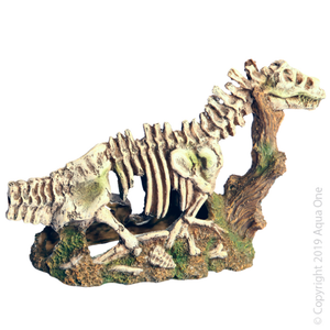 Ornament Dinosour Skeleton