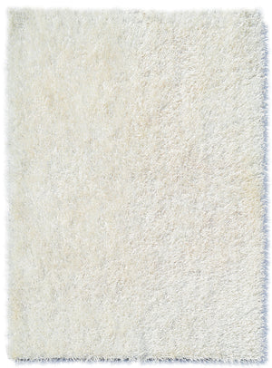 Shag Rug 5 x 7 - Wall Beds Plus