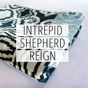 INTREPID SHEPHERD REIGN