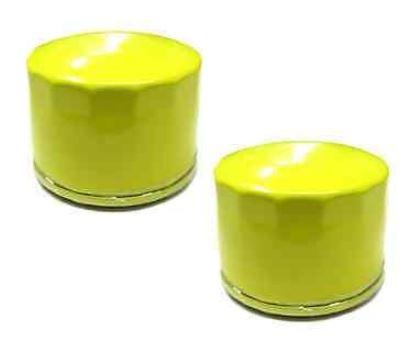 2-oil-filters-for-briggs-stratton-pro-series-engines-696854-extended-life