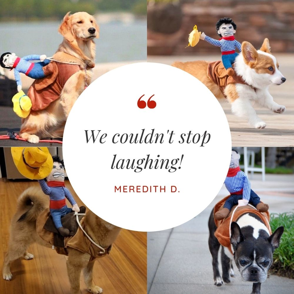 Customer Quote: We couldn't stop laughing! Meredith D.
