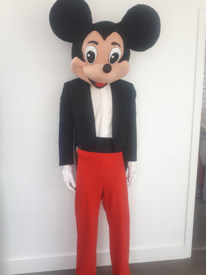 COSTUME RENTAL - R111A  Mr Mouse..