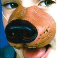 ACCESS: Dog Nose