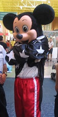 COSTUME RENTAL - R111  Mickee Mouse....9 pieces