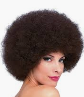 WIG: Afro Wig (brown smaller)
