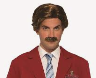 Wig: 1980's Anchorman WIg
