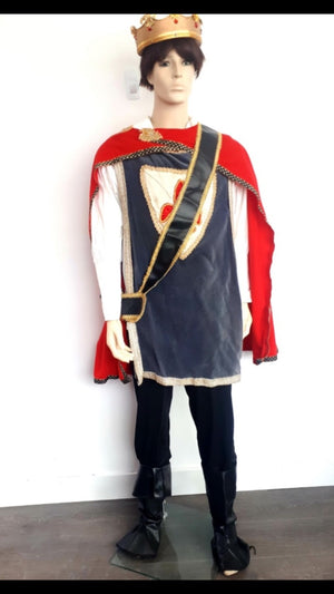 COSTUME RENTAL - C7 Sir Lancelot