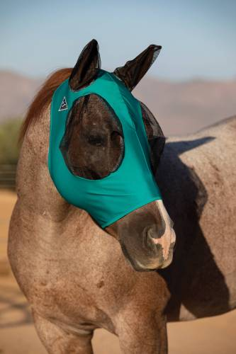 Comfort Fit Lyrca Fly Mask