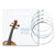 Violin String Set for 4/4, 3/4, 1/2 Size Violins - Full Set E A D G